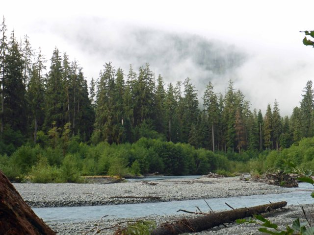 Olympic National Park - Hoh River Backpack 08-30_31-2017__0012_edited-1