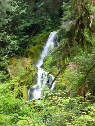 Olympic National Park - Hoh River Backpack 08-30_31-2017__0052_edited-1