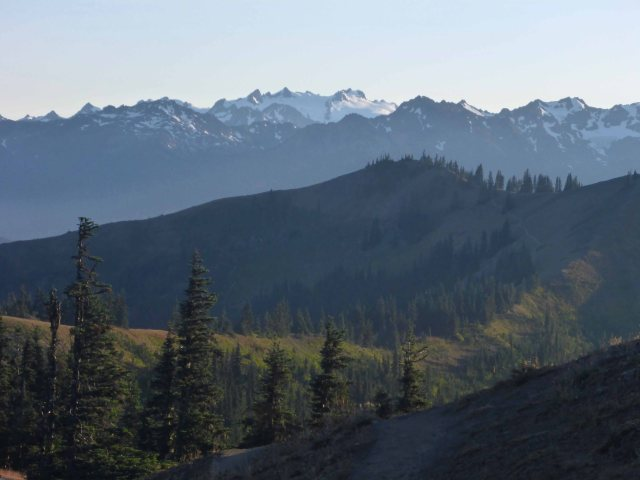 Olympic National Park - Sunrise Ridge Hike 08-29-2017__0015_edited-1